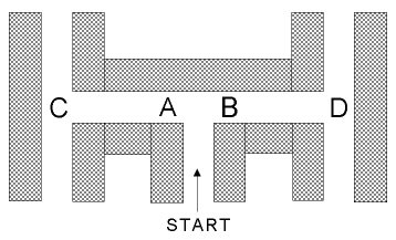 An illustration of the maze used in the experiment