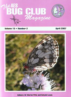 Bug Club Magazine cover - April 2007 - showing a photograph of a Marbled White butterfly (_Melanargia galathea_) with red mites