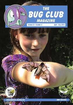 April/May 2013 Bug Club Magazine cover showing a photograph of Bug Club member Chloe Sutton holding an Eyed Hawkmoth _Smerinthus ocellata_.