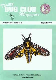 Bug Club Magazine cover - August 2006