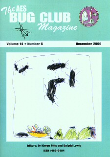 Bug Club Magazine cover - December 2006 - showing a drawing of African Black Crickets by a Bug Club Member