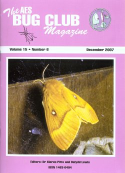 December 2007 Bug Club Magazine cover showing a photograph of a Northern Eggar moth (_Lasiocampa quercus f.callunae_) attracted to light on a remote Welsh mountain in July 2006