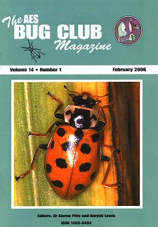 Bug Club Magazine cover - February 2006