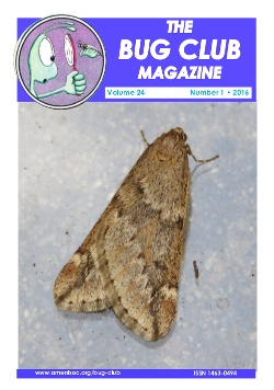 February 2016 Bug Club Magazine cover showing a Male March moth, photo by Olaf Leillinger