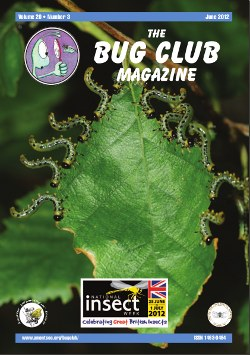 June 2012 Bug Club Magazine cover showing a sawfly larvae.