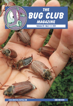 April/June 2017 Bug Club Magazine cover showing cockchafer beetles