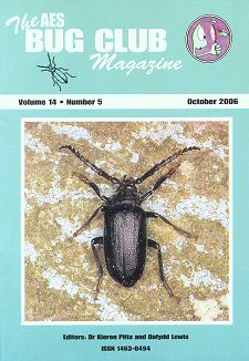 Bug Club Magazine cover - October 2006