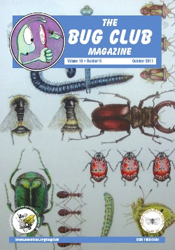 October 2011 Bug Club Magazine cover showing a painting by Cath Hodsman entitled 'All Creatures Great and Small'. It features rare or declining British insect species.