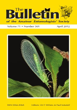 April 2012 Bulletin cover showing the Common Green Lacewing, _Chrysoperla carnea_.