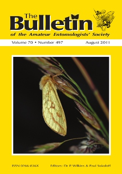 August 2011 Bulletin cover showing a female Ghost Moth (_Hepialus humuli_)