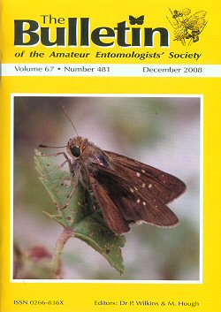 December 2008 Bulletin cover showing the Millet Skipper, _Pelopidas thrax_