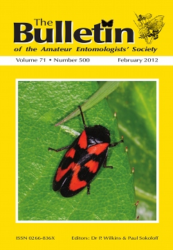February 2012 Bulletin cover showing the Red and Black Froghopper, _Cecropia vulnerata_.