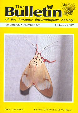October 2007 Bulletin cover - showing a photograph of the moth _Amerila astreus_ caught in northern Thailand