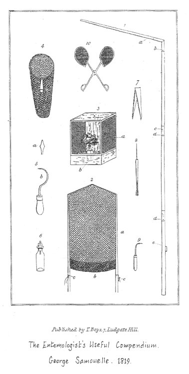 An illustration from George Samouelle's Entomologist's Useful Compendium showing the structure of a clap-net