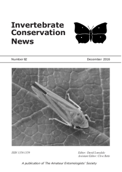 December 2016 Invertebrate Conservation News cover showing Rhododendron Leafhopper (_Graphocephala fennahi_).