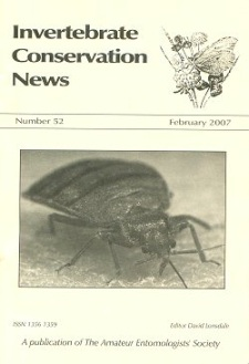 February 2007 Invertebrate Conservation News cover -  showing a photograph of an adult Bedbug (_Cimex lectularius_)