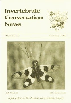 February 2008 Invertebrate Conservation News showing a photograph of an adult Neuropteran or Owlfly (_Ascalaphus macaronius_)