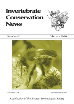 February 2010 Invertebrate Conservation News cover showing the Carder Bee, _Bombus pascuorum_.