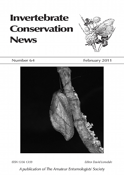 February 2011 Invertebrate Conservation News cover showing the lacewing _Drepanepteryx phalaenoides_.