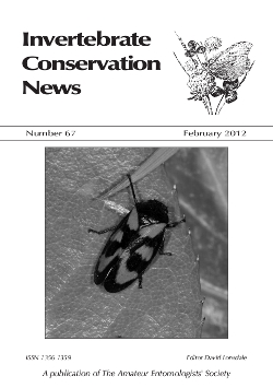 February 2012 Invertebrate Conservation News cover showing the Red and Black Froghopper, _Cecropia vulnerata_.