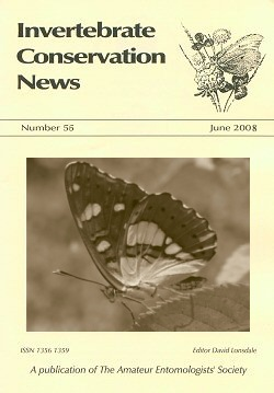 June 2008 Invertebrate Conservation News showing the underside of the Southern White Admiral (_Limenitis reducta_).