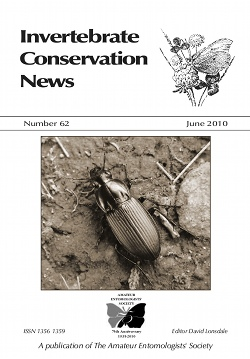 June 2010 Bulletin cover showing Kugelann's Ground Beetle, _Poecilus kugelanni_, (Coleoptera: Carabidae). The photo was supplied by John Walters