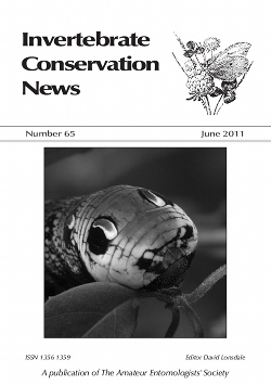 June 2011 Invertebrate Conservation News cover showing the larva of the Elephant Hawkmoth (_Deilephila elpenor_)