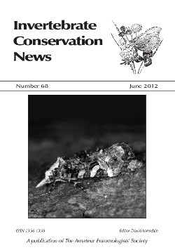 June 2012 Invertebrate Conservation News cover showing the tortrix moth _Phtheochroa rugosana_.