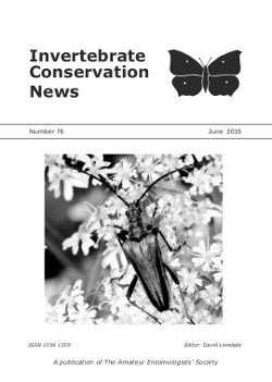 June 2015 Invertebrate Conservation News cover showing the longhorn beetle _Stenocorus meridianus_.