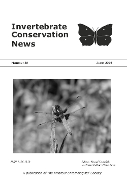 June 2016 Invertebrate Conservation News cover showing the The Broad-bodied Chaser _Libellula depressa_.