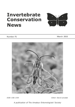 March 2015 Invertebrate Conservation News cover showing a Thrift Clearwing _Pryopteron muscaeformis_.