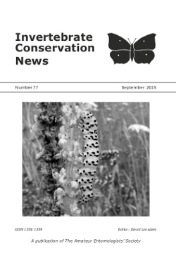 September 2015 Invertebrate Conservation News cover showing a larva of the Striped Lychnis moth (_Cucullia lychnitis_).