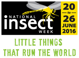 National Insect Week logo
