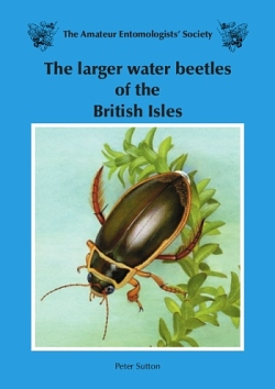 The cover of The larger water beetles of the British Isles - illustrated by Richard Lewington